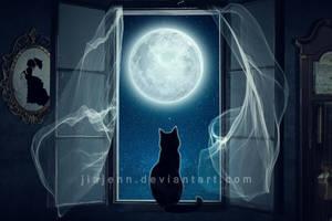The Cat in the window by jiajenn