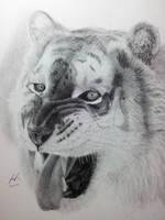 Golden Bengal Tiger by Pandaforge