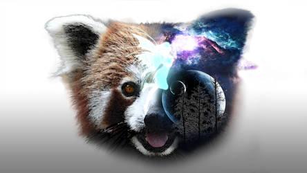 Haluci Panda by Ethneomystica