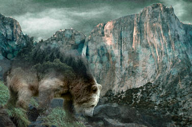BEAR double exposure by Ethneomystica