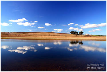 Blue Reflections by NunoPires