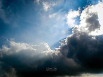 Sun Rays by NunoPires