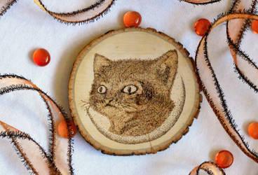 CAT AND MOON WOOD BURNING by aashler