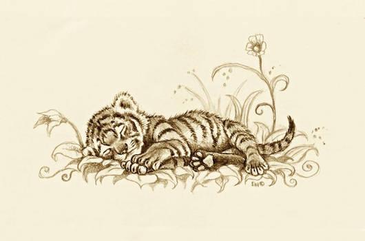Tiger Cub by EsthervanHulsen