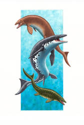Mosasaur species by EsthervanHulsen