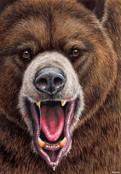 Short Faced Bear (Arctodus simus) by EsthervanHulsen