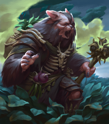 shaman by emotiON-founder