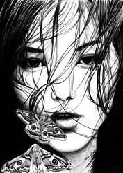 Dreamer Moth by laycass