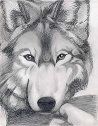My Wolf by unyko