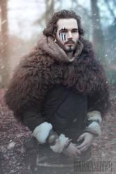 Viking in the Cold by Vanderstorme