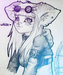 Whisk by Vanderstorme