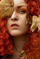 - Late Autumn - by Vanderstorme