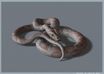 Snake by ninja-sheep