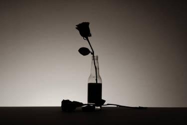 Valentine's 2 by lilbic08