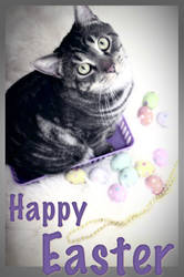 Happy Easter from Raylan by VelaSerul