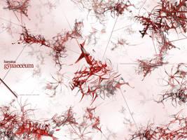 hamatus gynaeceum by iuneWind