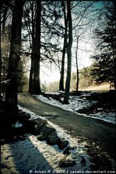 . Snow landscape by Zazaka