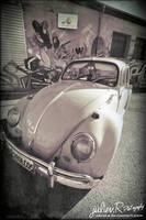 .Volkswagen cox by Zazaka