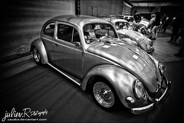 Flamed Beetle by Zazaka