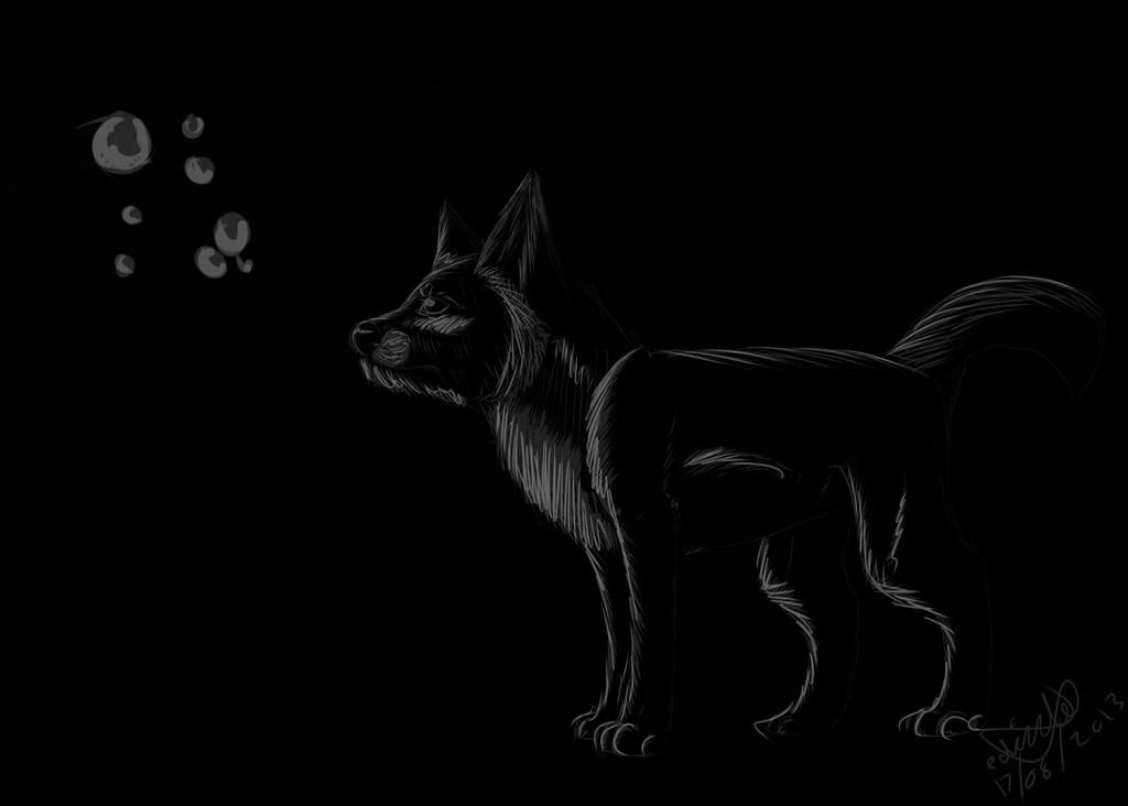 Black N White Wolf Wallpaper By