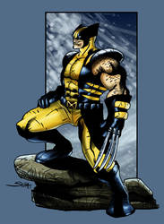 Wolverine from X-men by SachaLefebvre
