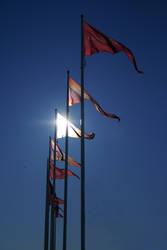 glorious flags by BarrelOfAGun