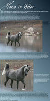 Horse in Water Tutorial by suntanna