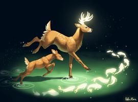 Way to the Woods by Helmiruusu