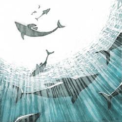 Dolphin by jopeli