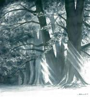 Black trees by jopeli