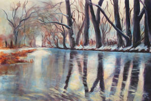 Winter river by diana-0421