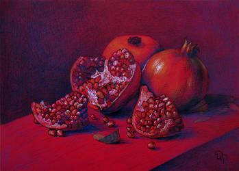 Pomegranate by diana-0421