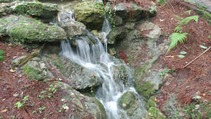 Mini Waterfall at Rainbow Spring Park by Le-Smittee