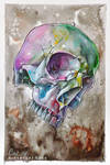 psychedelic skull by MrBonecracker