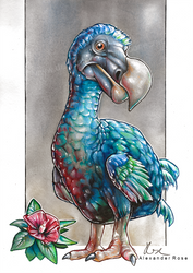 Dodo by MrBonecracker