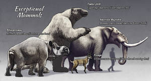 TMHOTW: Exceptional Mammals by vcubestudios