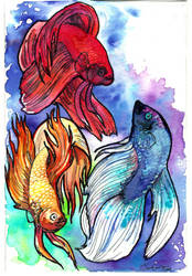 betta fishes commission by jupiterjenny