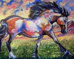 Americas horse by jupiterjenny