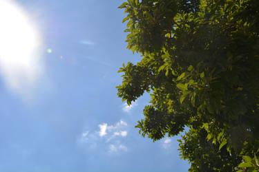 Blue'Sky by StellaeArrente