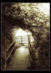 Blossom Bridge Variation by Forestina-Fotos