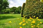 Croft Castle Gardens by Forestina-Fotos