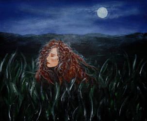 Moonlit Field by Forestina-Fotos