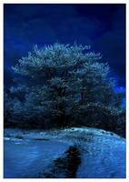 Moonlight In It's Branches by mistressgala