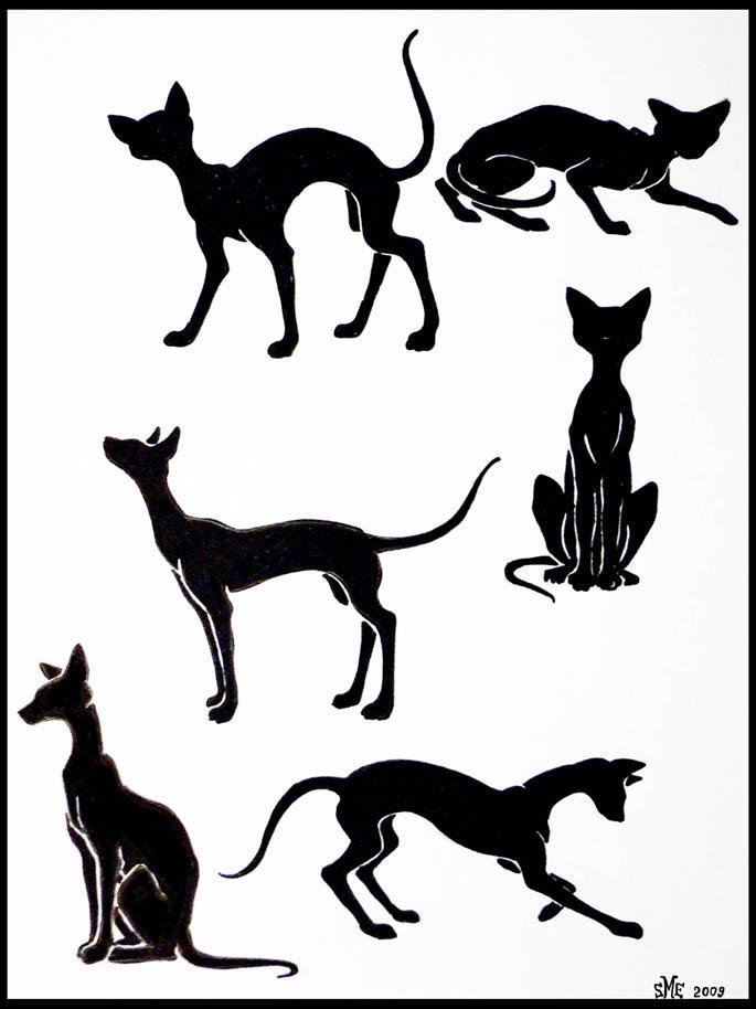 Black cats by Delta-NIFTI