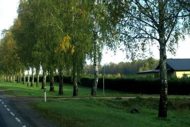 Autumn 473 by MASYON
