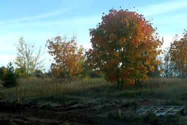 Autumn 476 by MASYON