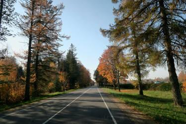 Autumn 535 by MASYON