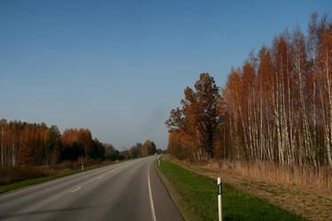 Autumn 548 by MASYON