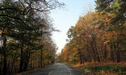 Autumn 549 by MASYON