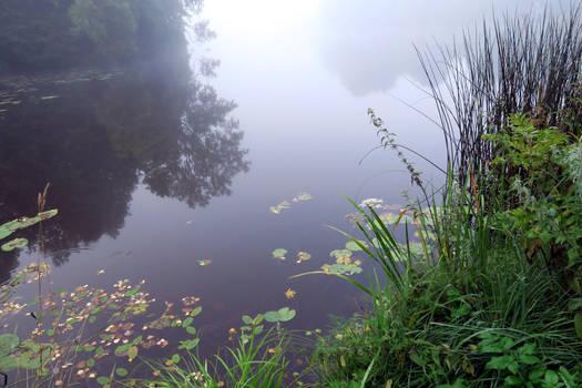 Autumn fog 91 by MASYON